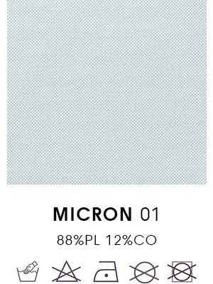 Micron 01