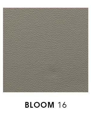 Bloom 16