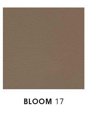 Bloom 17