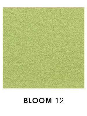 Bloom 12