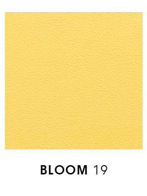 Bloom 19
