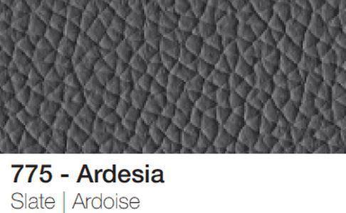 Ardesia