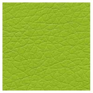 Verde/ Green B08
